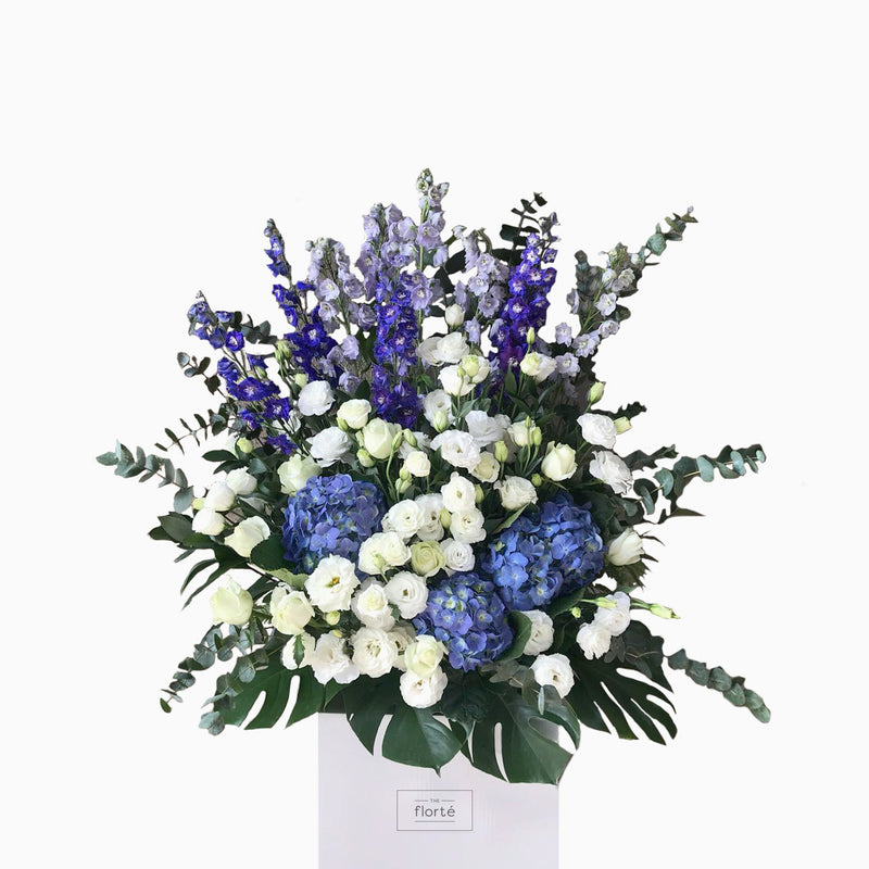 The Florté | Blue Royalty, Congratulatory Stand