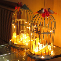 Birdcage with Fairy Lights