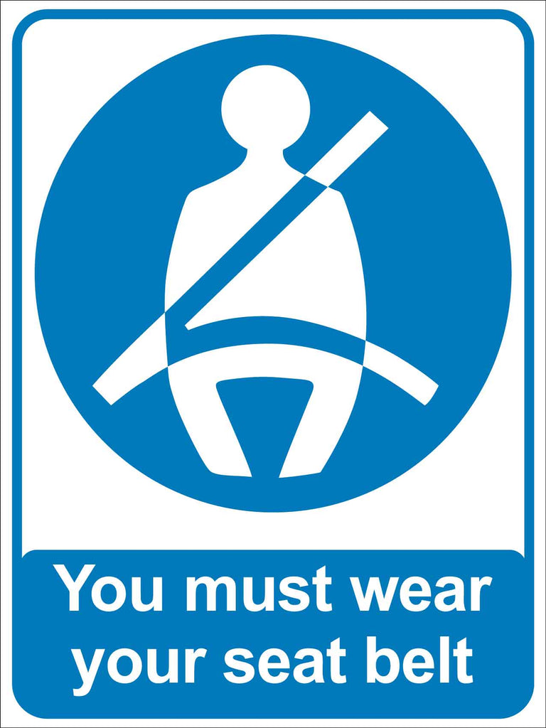 You Must Wear Your Seat Belt Sign