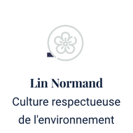 lin normand