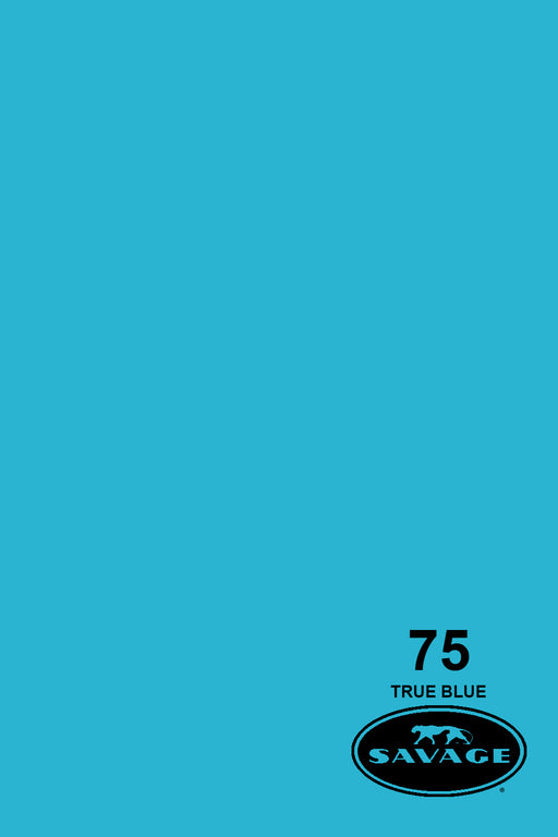 Savage Widetone Seamless Background Paper (#75 True Blue, 9ft x 36ft)