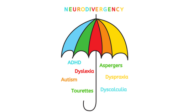 What is the difference between neurodiversity and neurodivergency?