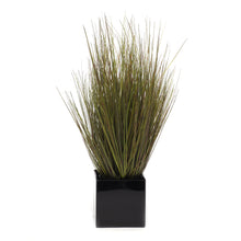POTTED HARVEST STYLE GRASS BUSH