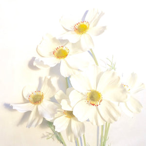 WHITE COSMOS BUNCH
