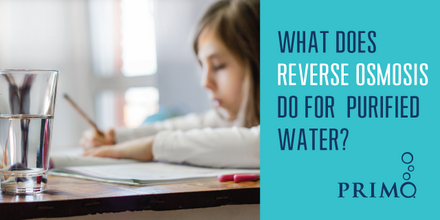 What Does Reverse Osmosis Do for Purified Water?