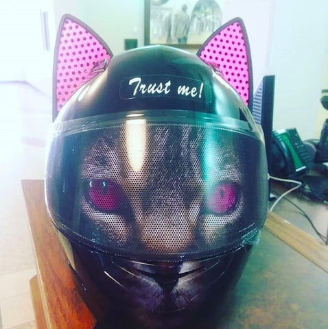 Airbrushed Custom Cat Ear Helmet with Pink Decals