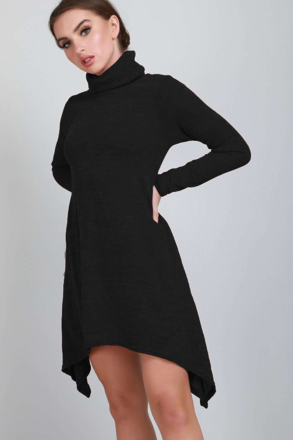 Cara Roll Neck Long Sleeve Dipped Hem Swing Dress - bejealous-com