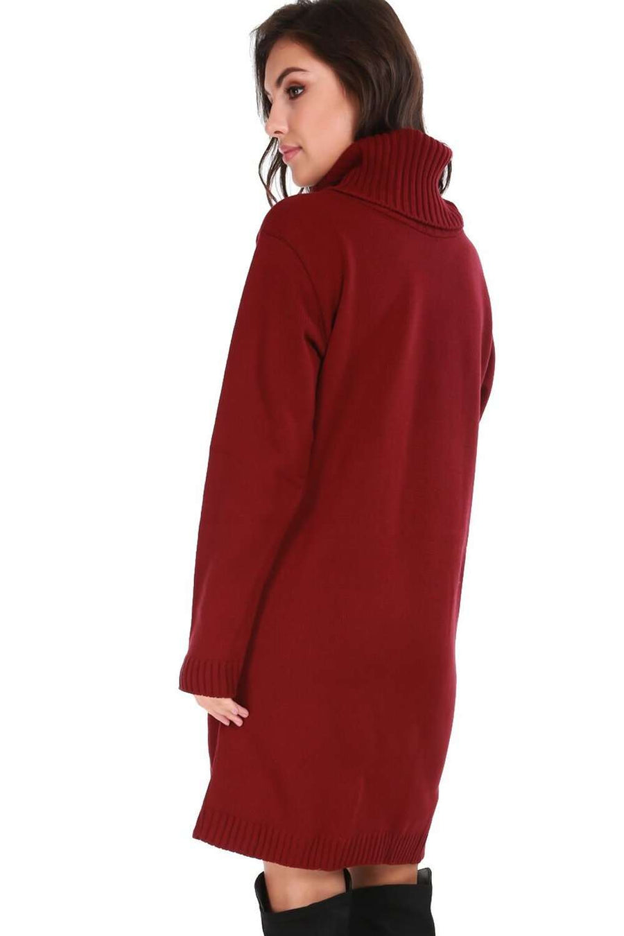 Darcie Roll Neck Knitted Jumper Dress - bejealous-com