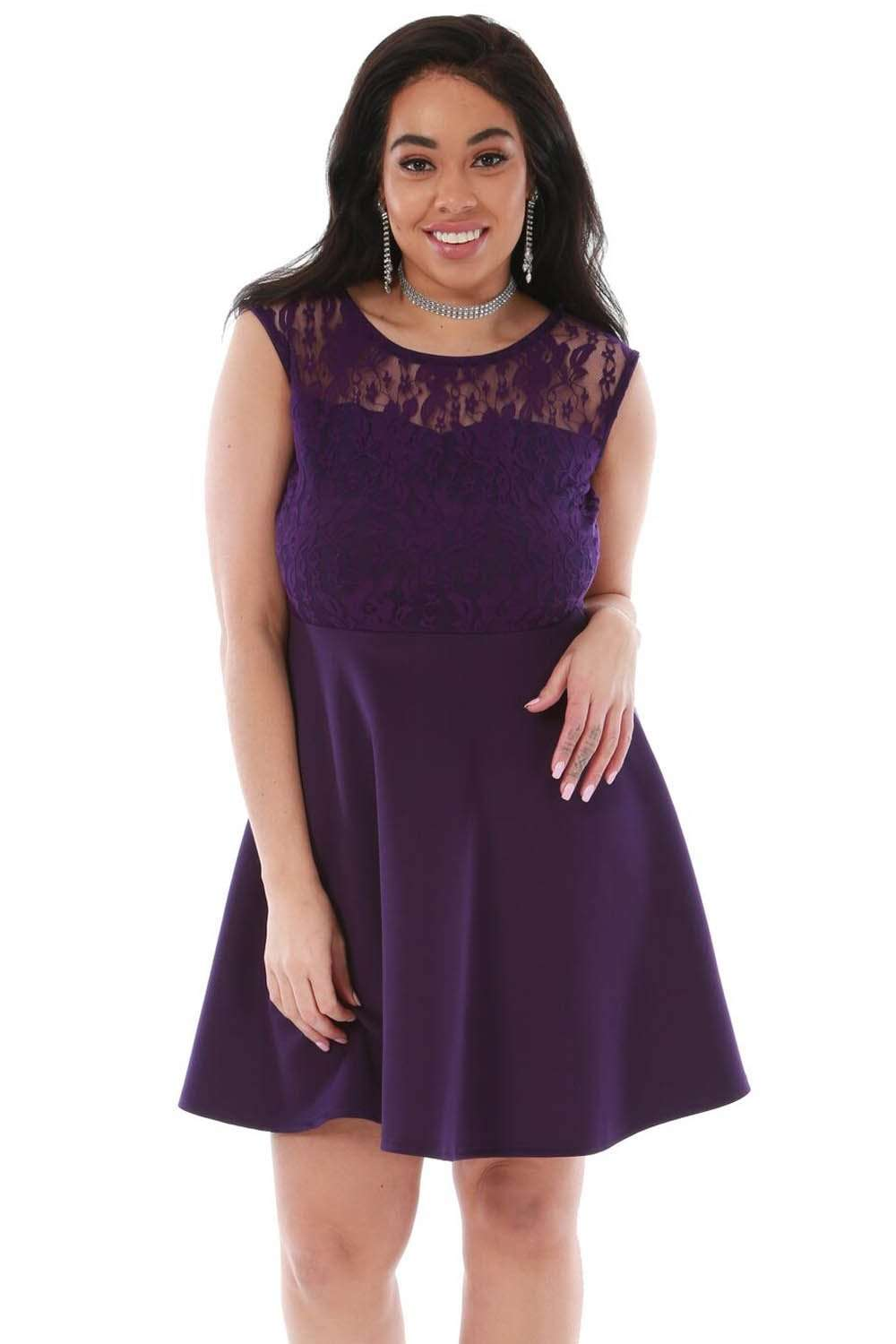Plus Size Sleeveless Lace Mini Skater Dress - bejealous-com