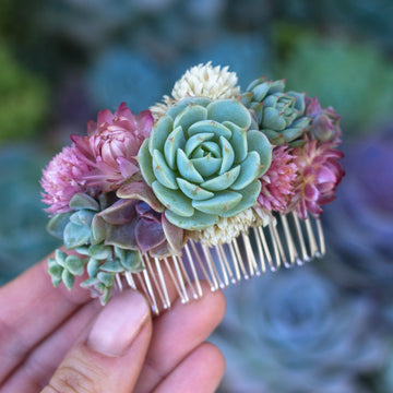 DIY Succulent Hair Comb
