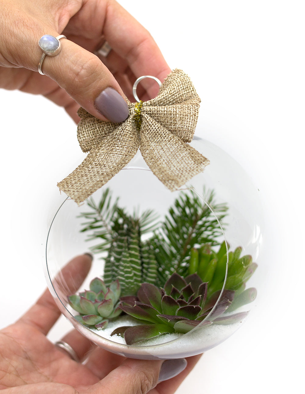 Botanical Bright - DIY Tutorial Succulent Holiday Ornament