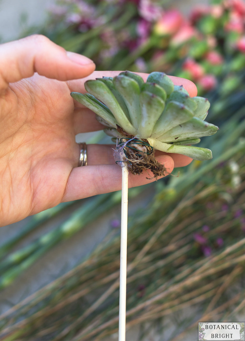 DIY - How to Add Succulents to Any Bouquet