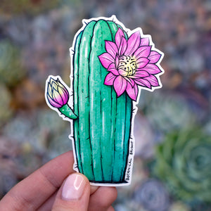 Blooming Cactus Vinyl Sticker Set