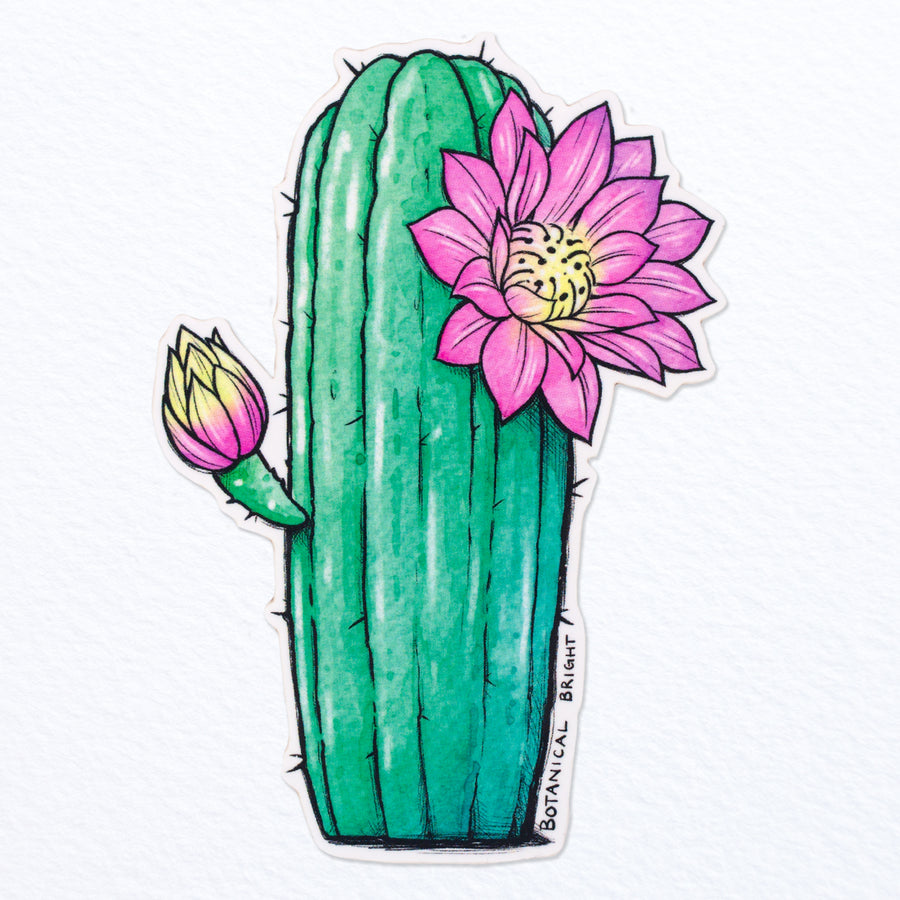 Tall Blooming Cactus Vinyl Sticker