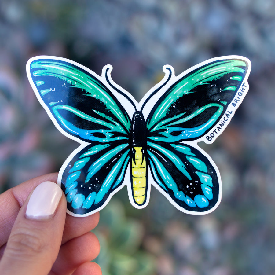 Queen Alexandra's Birdwing Butterfly Vinyl Sticker