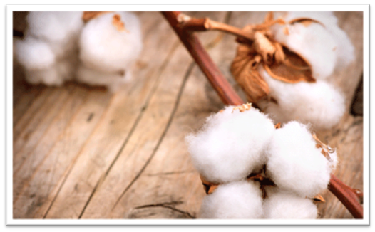 The Benefits Of Buying Organic Cotton Baby Clothes