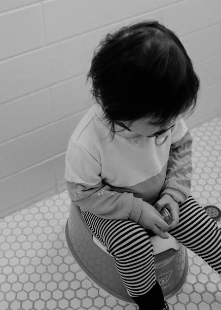Potty Training Tips - When To Start and How To Begin