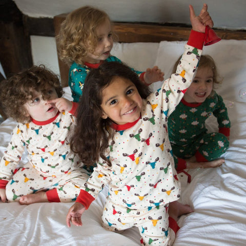 LGR PJ's - Rainbow Moose - Organic Cotton