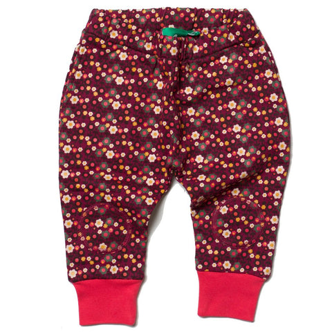 LGR Jelly bean Joggers - Forest Flowers - Organic Cotton