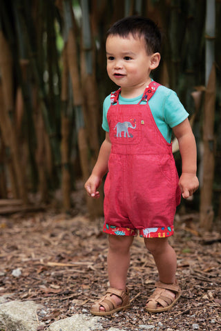 Frugi Rury Reversible Dungaree - True Red/Parakeet