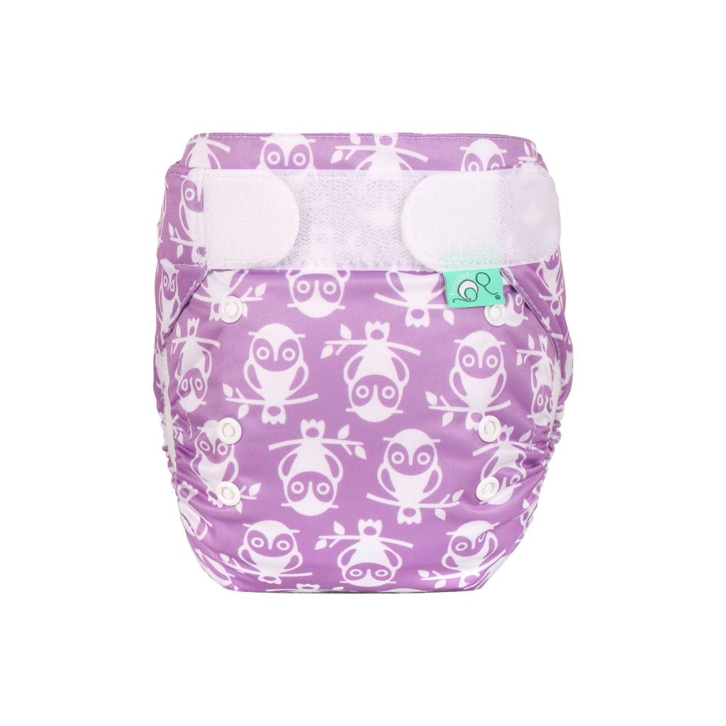 TotsBots Easy Fit Star Nappy - Owlbert