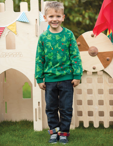 Image of Frugi Rex Jumper - Dragons