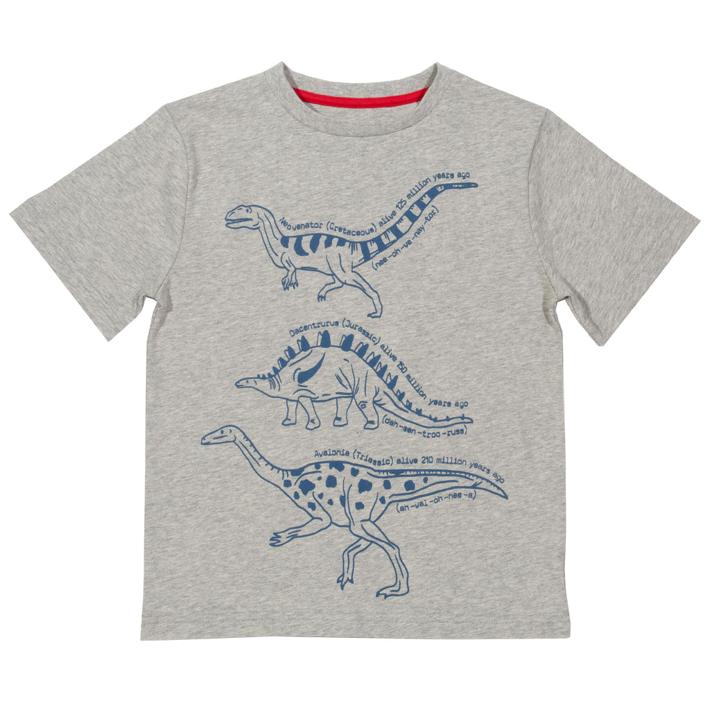 Kite Dinosaurs T-Shirt - Tilly & Jasper