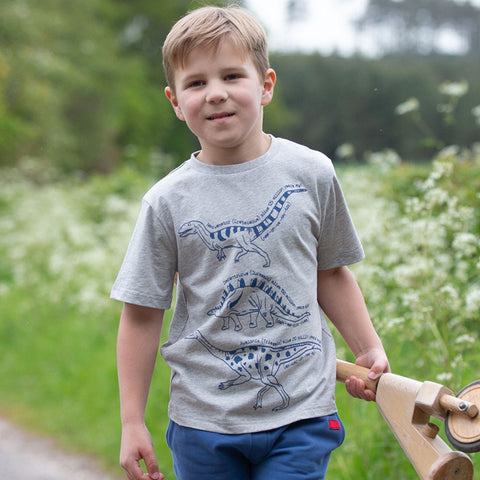 Image of Kite Dinosaurs T-Shirt - Tilly & Jasper
