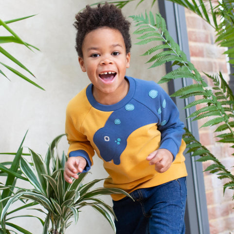 Image of Kite Dino-Sleeve Sweatshirt