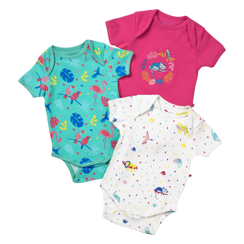Piccalilly Pack of 3 Baby Bodysuits - Tropical Flamingo