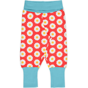 Maxomorra Rib Pants - Daisy
