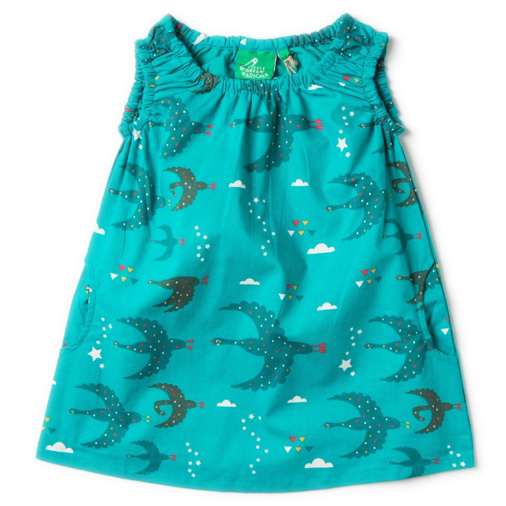 Flying South Twirl Dress
