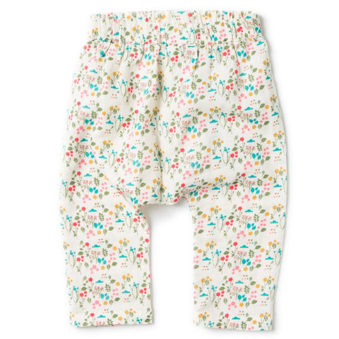 Botanical Jelly Bean Joggers- Organic Cotton