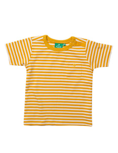 LGR T-Shirt - Gold Stripe