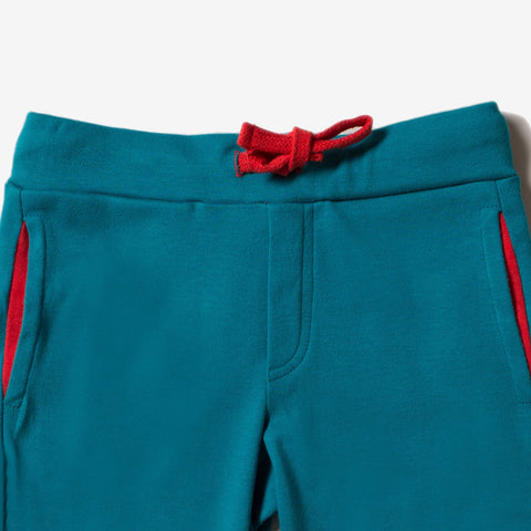 Image of LGR Teal Beach Shorts