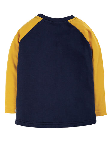 Image of Frugi Alfie Raglan Top - Indigo/Dragon