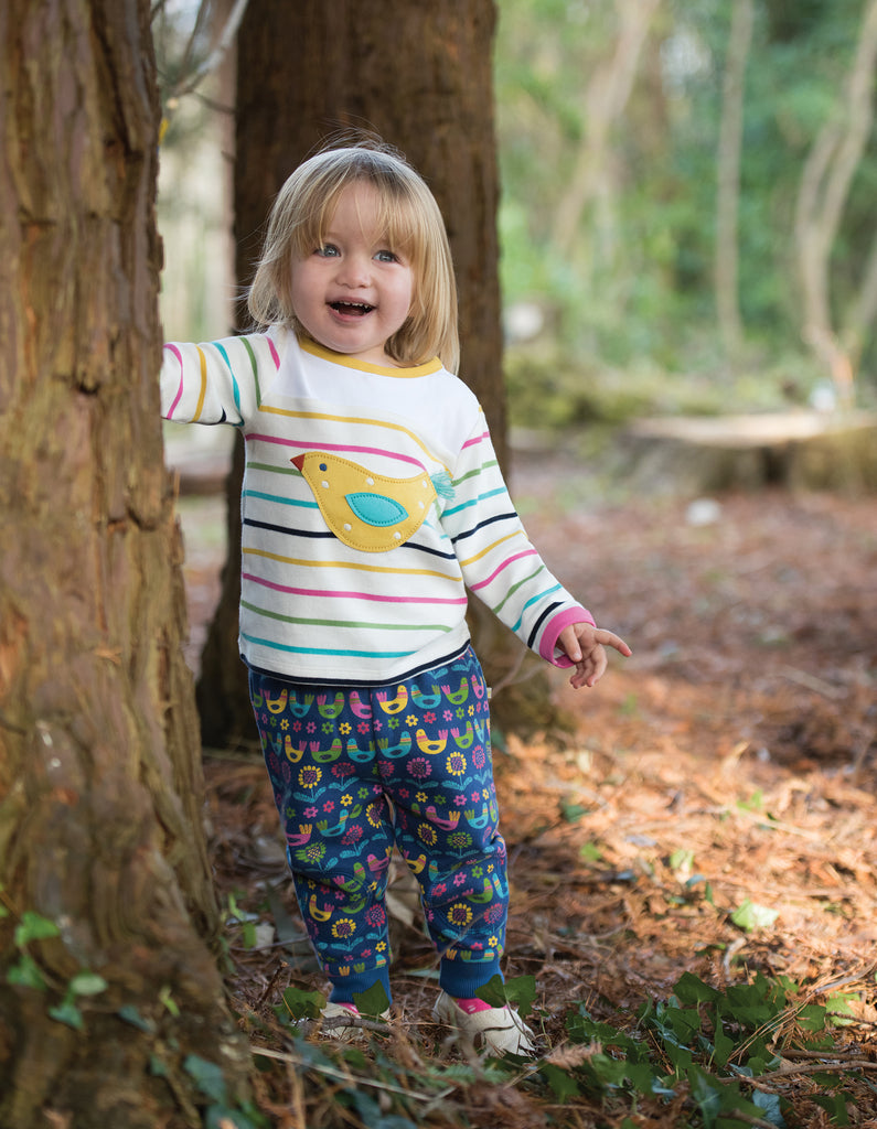 Frugi Playtime Panel Tee - Rainbow Chunky Breton/Bird - Tilly & Jasper