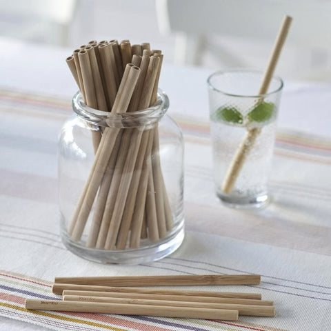 Bambu - Precision Reusable Bamboo Straws - 6 Pack with Brush