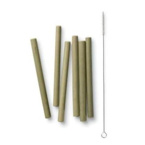 Bambu - Reusable Short Bamboo Straws - 6 Pack with Brush - Tilly & Jasper