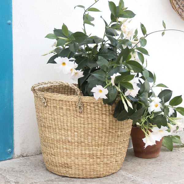 handmade in Italy Large rush basket with handles from Apulia Acquarica del Capo Siciliano Italian Handmade