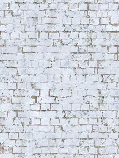 Retro gray white brick backdrop children photos