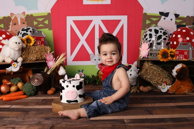 Children's hut animated backdrop spring background cake smash-cheap vinyl backdrop fabric background photography