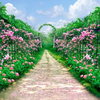 Scenery backdrop flowers and arches for wedding photography