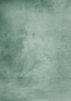 Light green abstract backdrop for portrait photo-cheap vinyl backdrop fabric background photography