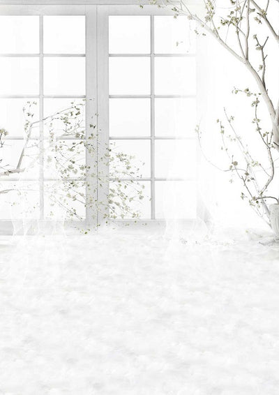 White window backdrop dreamy background