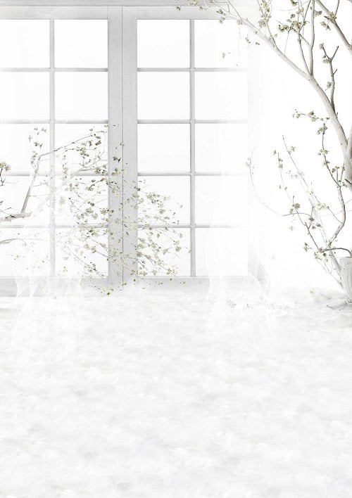 White window backdrop dreamy background for sale - whosedrop