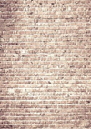 Khaki brick backdrop wall retro background-cheap vinyl backdrop fabric background photography