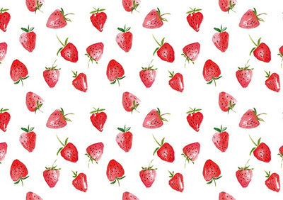 Summer photography backdrop strawberry background-cheap vinyl backdrop fabric background photography
