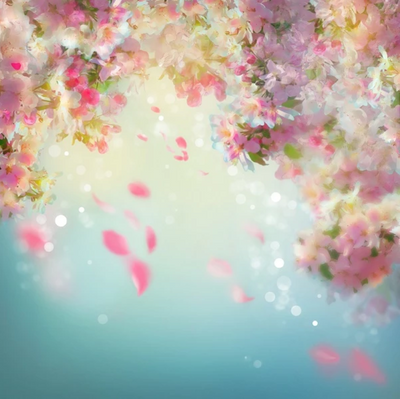 Spring photography backdrops pink flower background