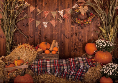 Autumn pumpkin backdrops with hay Thanksgiving background-cheap vinyl backdrop fabric background photography